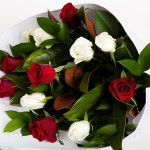Bouquet of 12 Red and White Roses