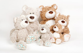Selection of Teddys